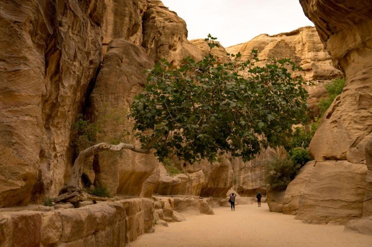 Petra with Kids-09974