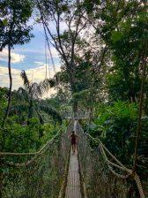 Atta Rainforest Lodge-0067
