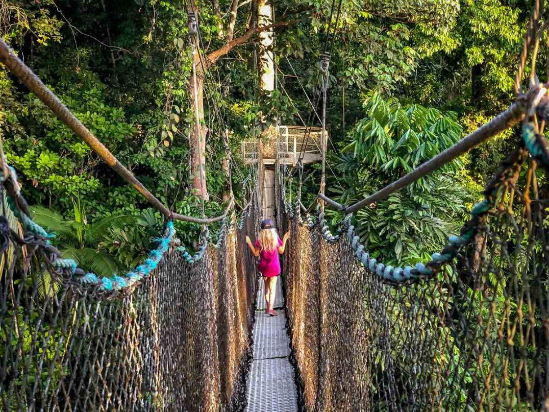Atta Rainforest Lodge-0092