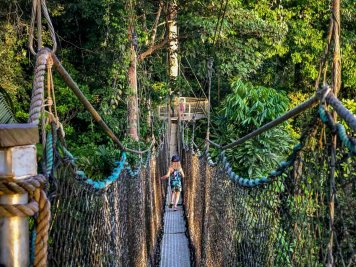 Atta Rainforest Lodge-0097