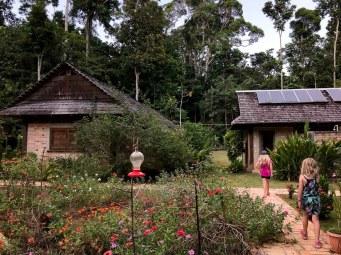 Atta Rainforest Lodge-0104