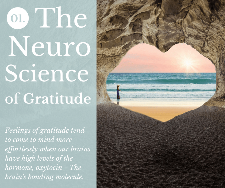 What does neuroscience have to say about the positive effects of gratitude?