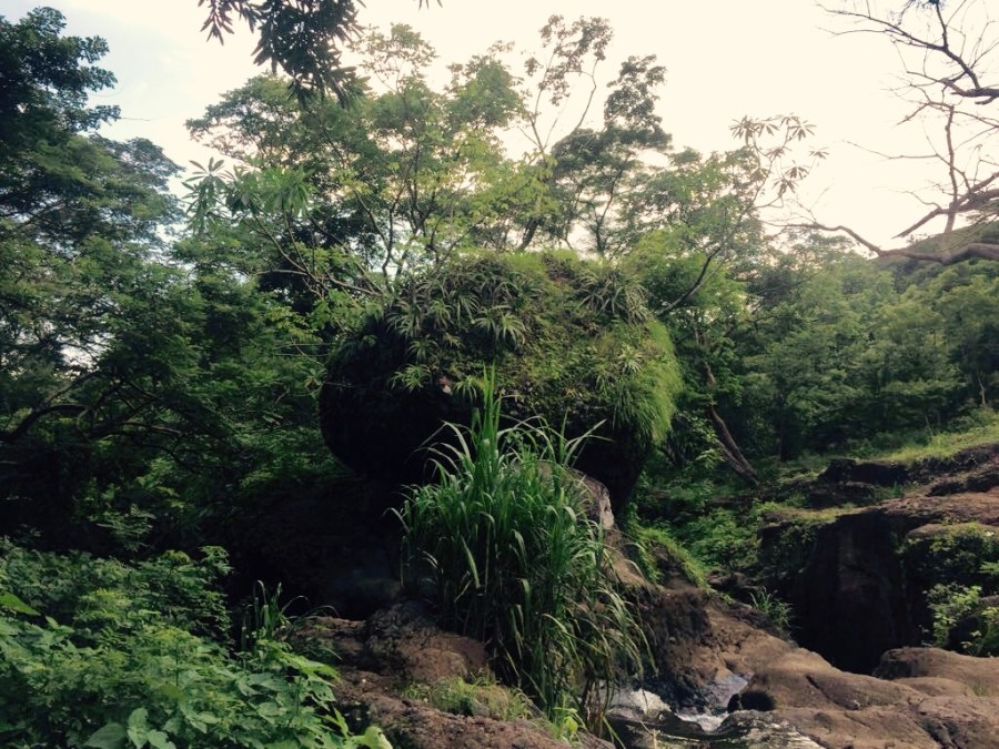 Tamanique waterfalls without a guide
