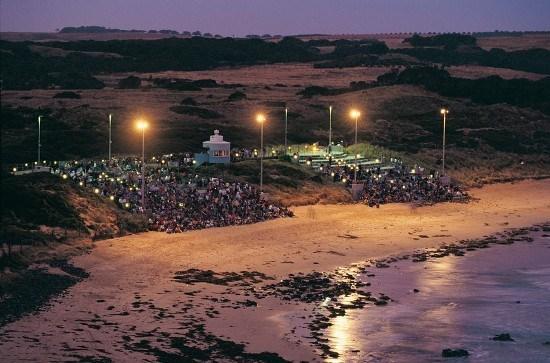 Penguin Parade beach bleachers