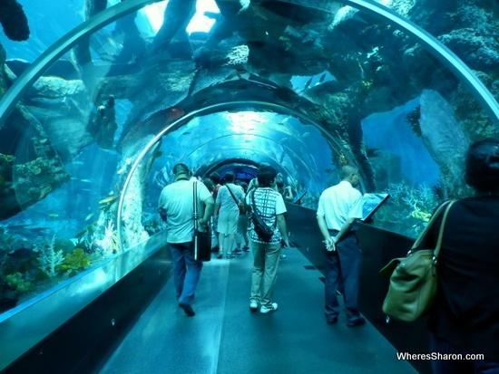 S.E.A. Aquarium Resorts world Sentosa