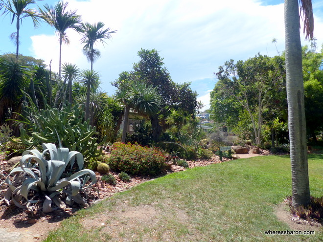 free things to do in townsville qld at botanic gardens