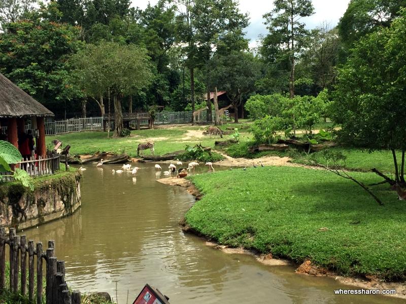 Taiping Zoo
