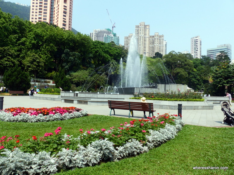Hong Kong Zoological and Botanical Gardens things to do in hk with kids