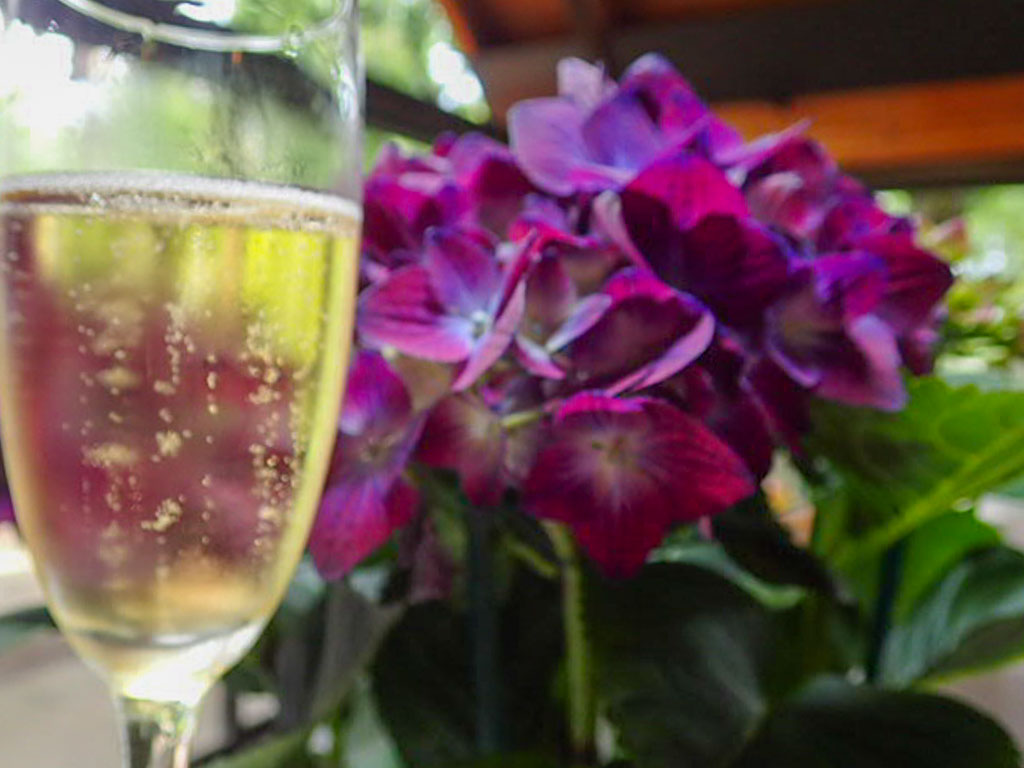A Little Sparkling Wine Out in The Garden