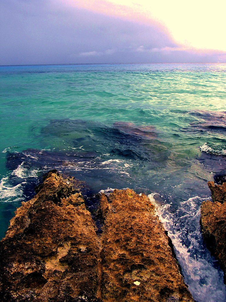 "Limestone rocky beach known as ""iron stone"" on Cozumel Mexico. Snorkel here."