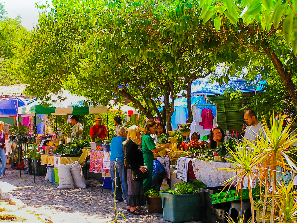 Saturday morning organic farmer's market in a San Miguel de Allende courtyard.
