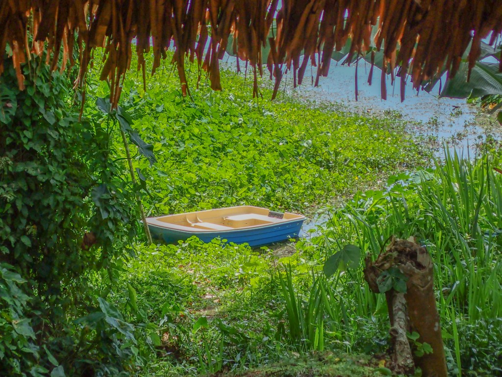 Rowboat on the Chagres River in Gamboa, Panama