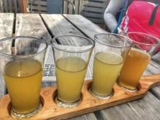 Cider Cellar Door Tasting