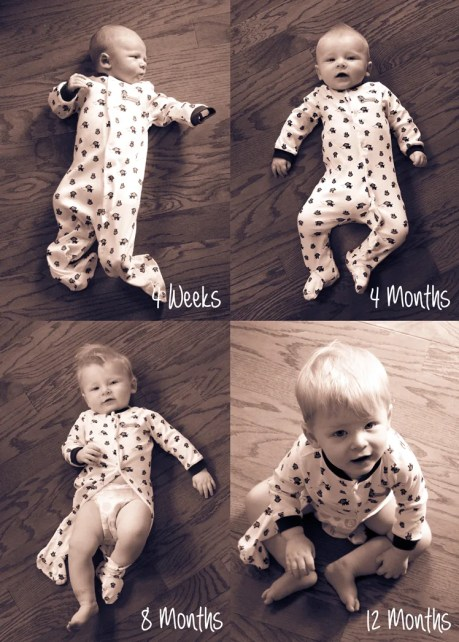 Monthly Baby Photos