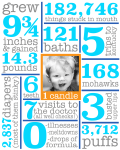 First Birthday Infographic