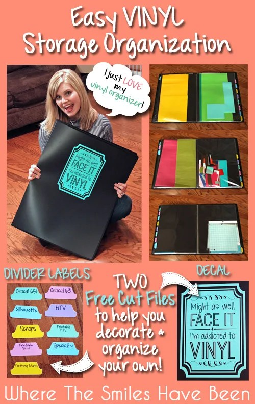 Easy Vinyl Storage Organization & TWO Free Cut Files!