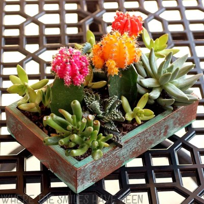 How to Make an Upcycled Faux Copper Succulent Planter