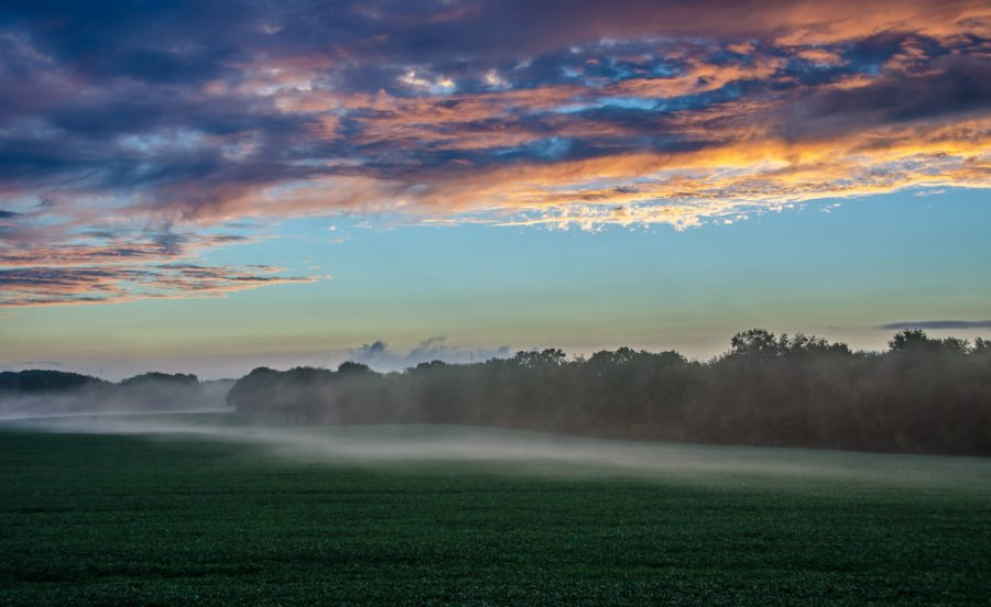 Fog Sunset Illinois William Woodward
