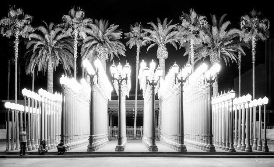 Night Lights Los Angeles William Woodward