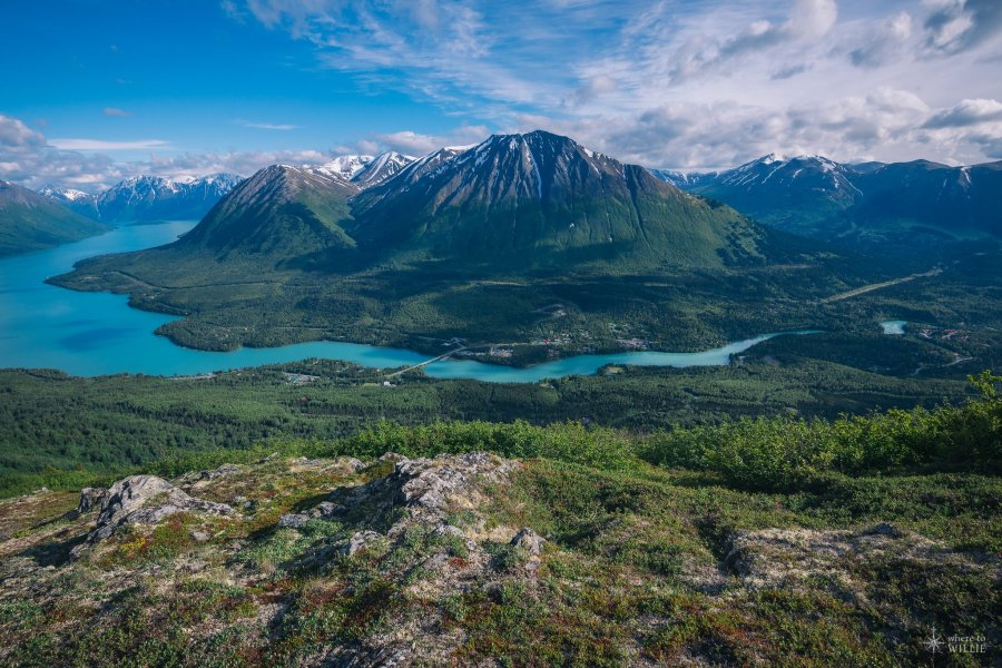 blue water of the kenai river cooper landing alaska william woodward
