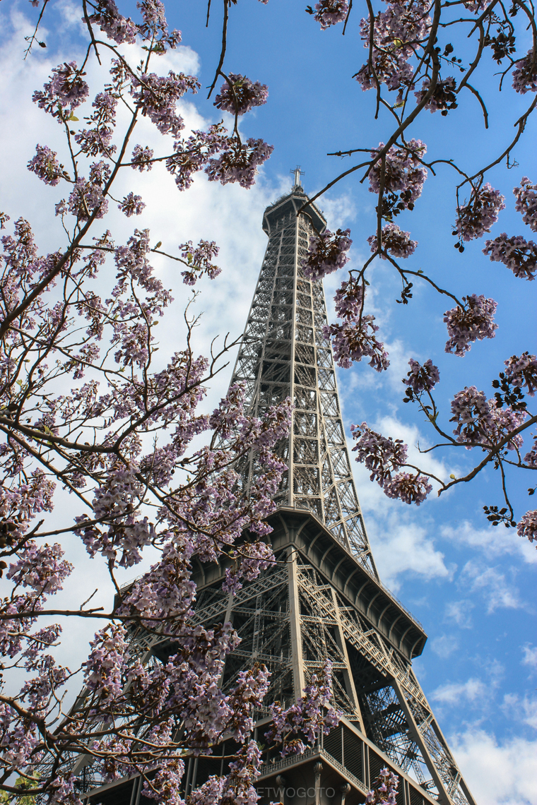 Paris in the springtime Where Two Go To