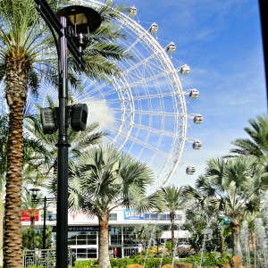 5 Things To Do In Orlando, Florida