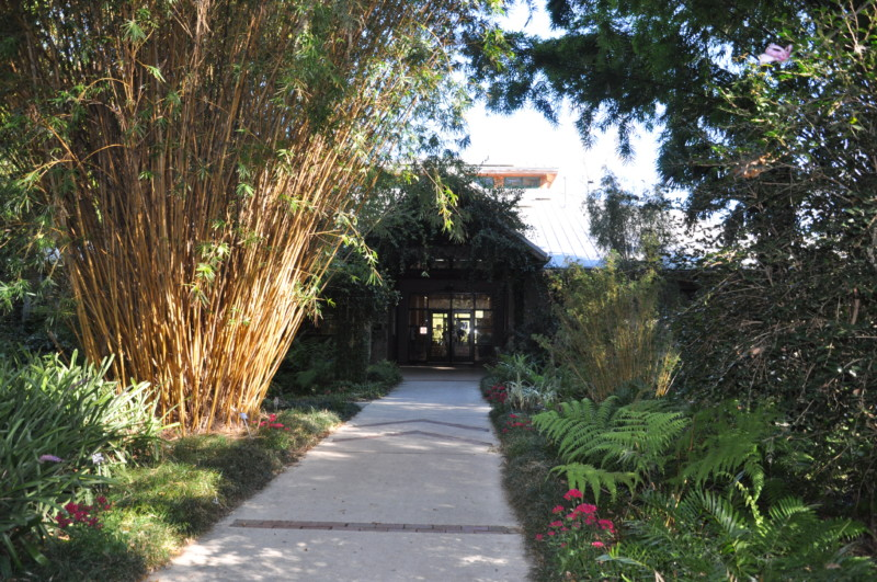 Kanapaha Botanical Gardens is one of the awesome things to see in Gainesville, Florida.