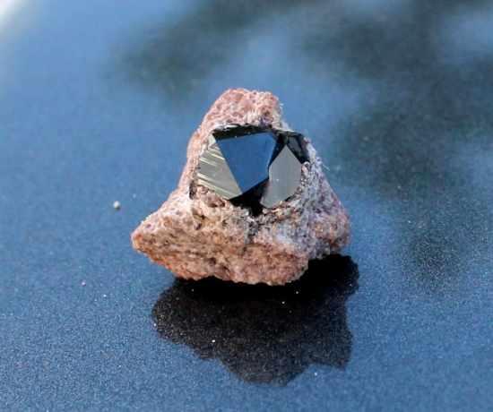 A garnet attached to rock from Garnet Fields Rockhound Area in Nevada