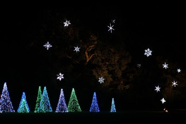 Blue and green Christmas trees made of lights