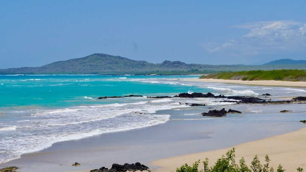 isabela island galapagos