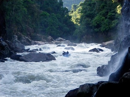 Amazon-top 5 longest rivers in the world