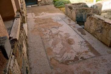 Casa Romana Mosaic Kos