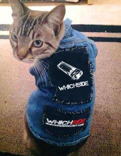 punk-kitty-whichside-vest