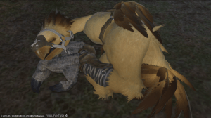 A sleeping chocobo
