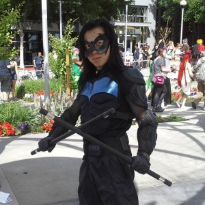 Nightwing Picture by Brit Cossel