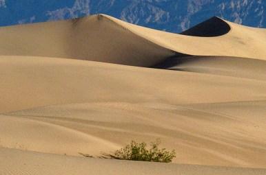 Bf California Death Valley
