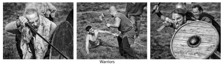 HC - Warriors - Alan Fowler