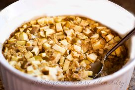 apple oatmeal_1CR