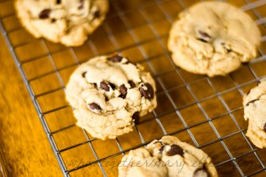 Puffy Chewy Chocolate Chip Cookies on Whisk Together 2