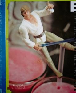 Skywalker Smoothie 4 Mary Riley Photography Wentzville Missouri