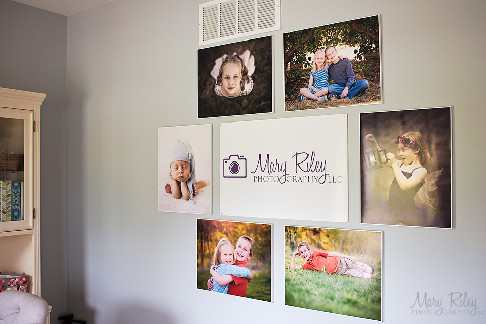 Canvas Wall 2 Mary Riley Photography Wentzville Missouri