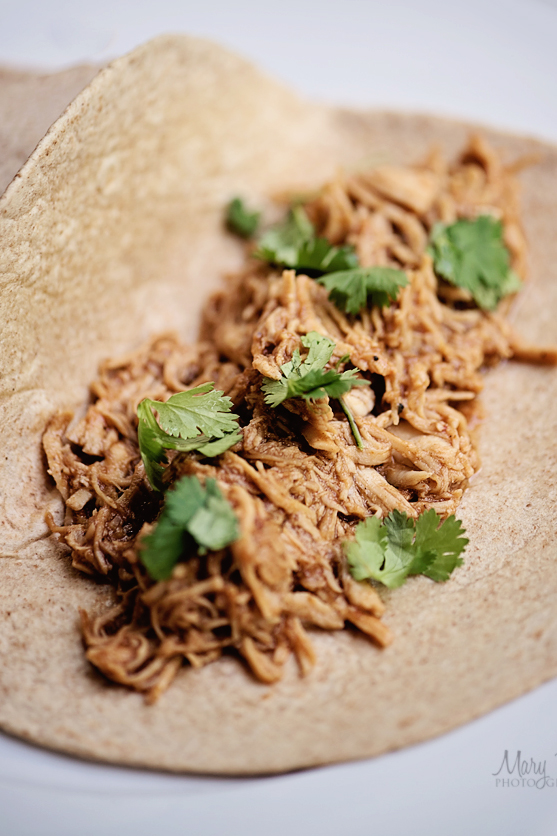 Shredded Chicken 2 Mary Riley Photography Wentzville Missouri