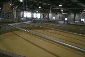 The open top fermenters