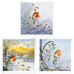Robins-in-winter