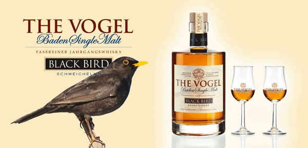 The Vogel Black Bird