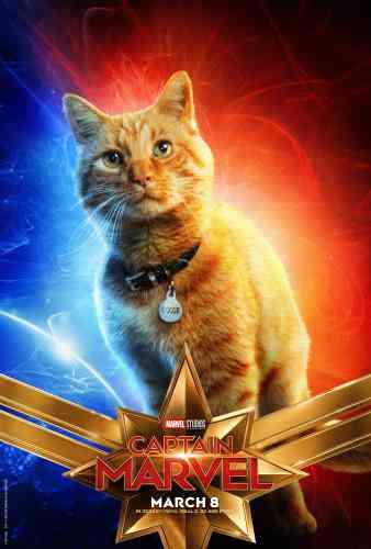 Captain MarvelCharacter Poster - Goose