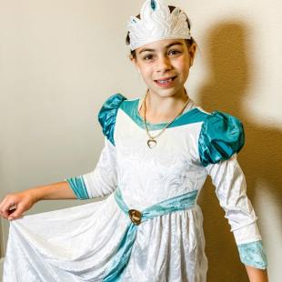 the swan princess odette costume