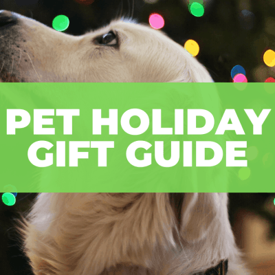 Pet Holiday Gift Guide