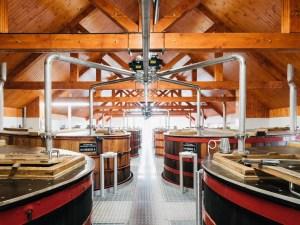 Fettercairn Washback Room