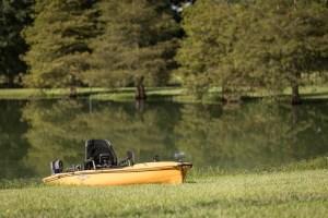 kayak on the pond